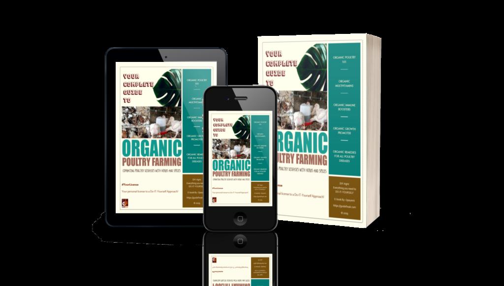 organic poultry farming