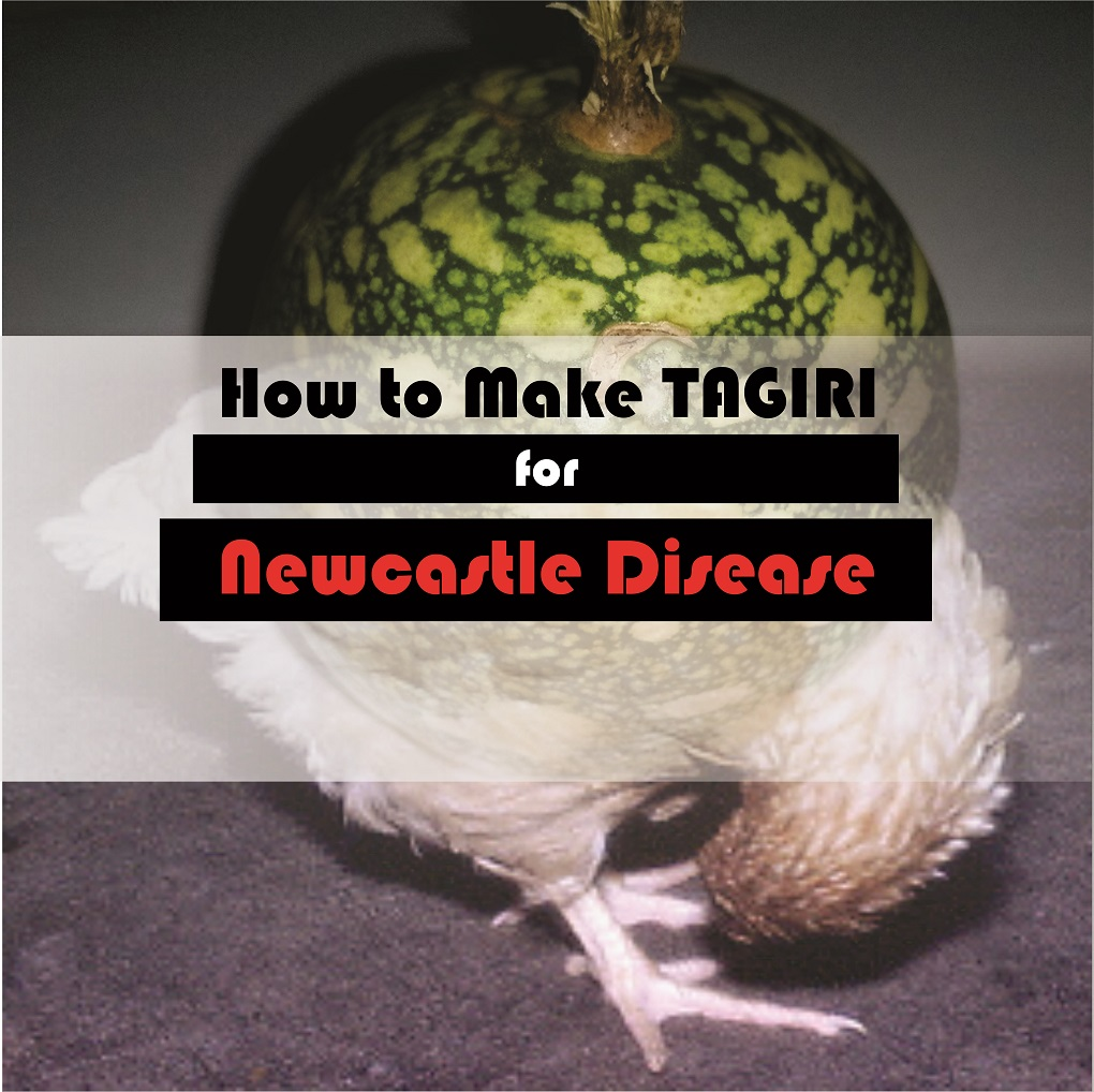how to make tagiri