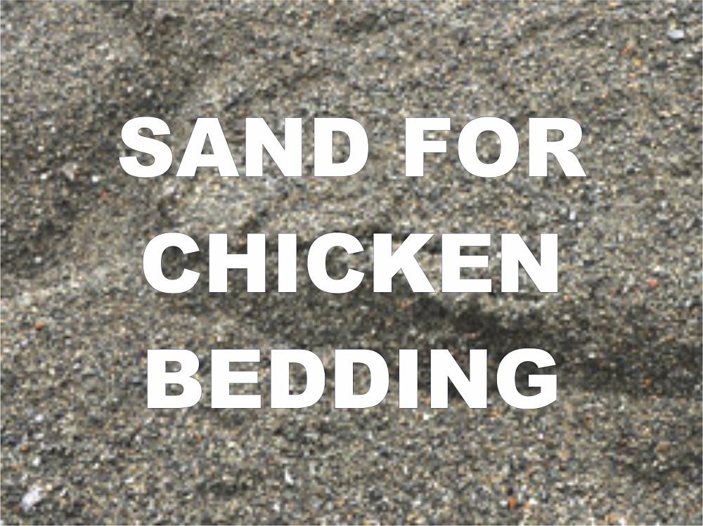 sand for chicken bedding
